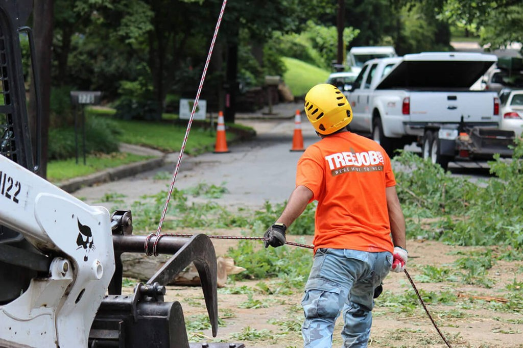 Arborist Consultations-National City CA Tree Trimming and Stump Grinding Services-We Offer Tree Trimming Services, Tree Removal, Tree Pruning, Tree Cutting, Residential and Commercial Tree Trimming Services, Storm Damage, Emergency Tree Removal, Land Clearing, Tree Companies, Tree Care Service, Stump Grinding, and we're the Best Tree Trimming Company Near You Guaranteed!
