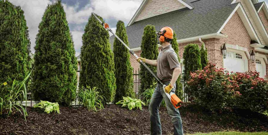 Bay Terraces-National City CA Tree Trimming and Stump Grinding Services-We Offer Tree Trimming Services, Tree Removal, Tree Pruning, Tree Cutting, Residential and Commercial Tree Trimming Services, Storm Damage, Emergency Tree Removal, Land Clearing, Tree Companies, Tree Care Service, Stump Grinding, and we're the Best Tree Trimming Company Near You Guaranteed!