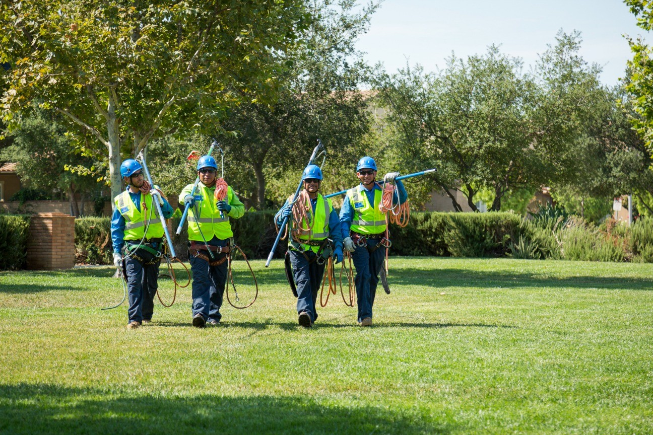 San Diego-National City CA Tree Trimming and Stump Grinding Services-We Offer Tree Trimming Services, Tree Removal, Tree Pruning, Tree Cutting, Residential and Commercial Tree Trimming Services, Storm Damage, Emergency Tree Removal, Land Clearing, Tree Companies, Tree Care Service, Stump Grinding, and we're the Best Tree Trimming Company Near You Guaranteed!
